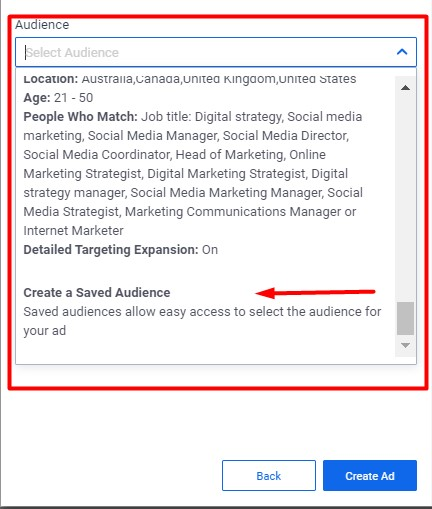 Add audience for lead ad