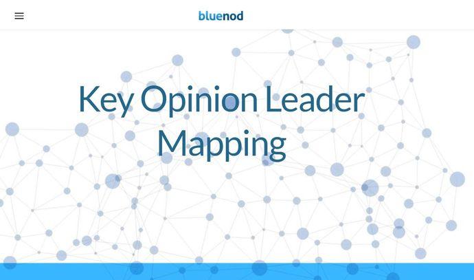 Twitter marketing tool - Bluenod
