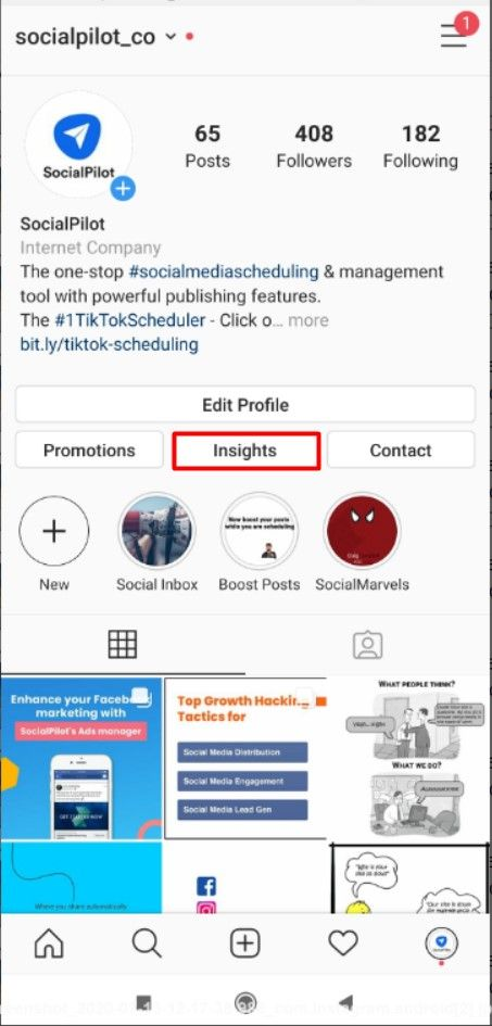 Instagram insights on mobile application