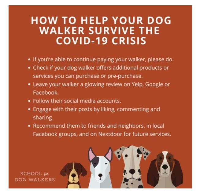 Help Your Dog