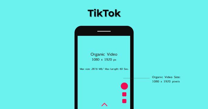 tiktok Organic Videos